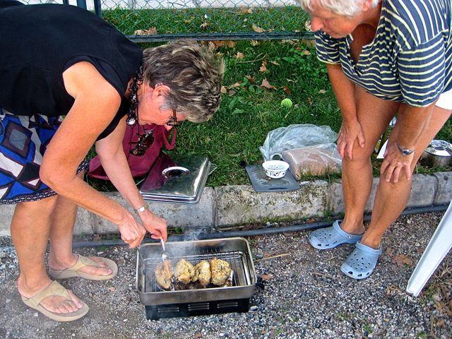 Ann keert kippies