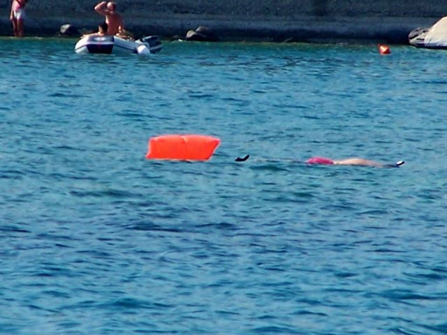 Cees koekeloert naar het onderwaterleven