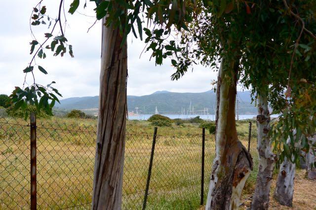 Uitzicht op de jachthaven